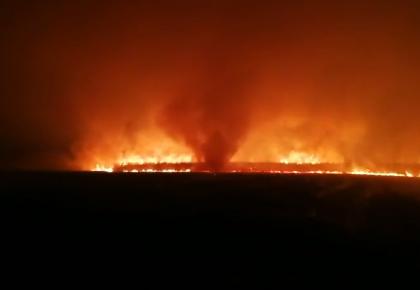 珲春中俄边境俄方境内森林火灾蔓延我国 消防连夜扑救