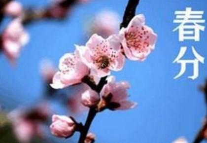 春分养生:调和阴阳身体安 多食时令蔬菜