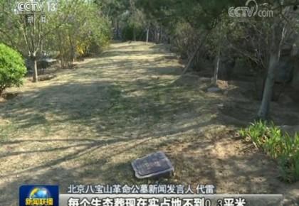 各地改革殡葬方式 推广生态安葬