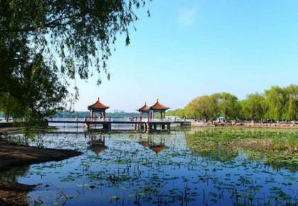 """长春南湖公园迎来""""大扫除"""""""