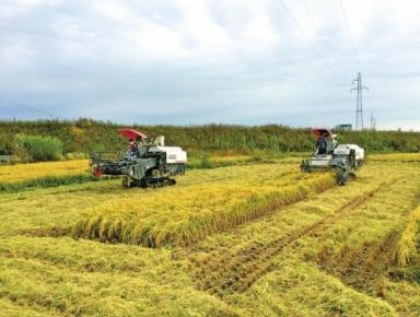 新华社播发文章点赞吉林农业智能化