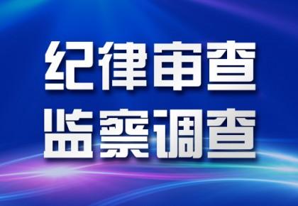 白山市公安局刑警支队副支队长顾昊接受纪律审查和监察调查