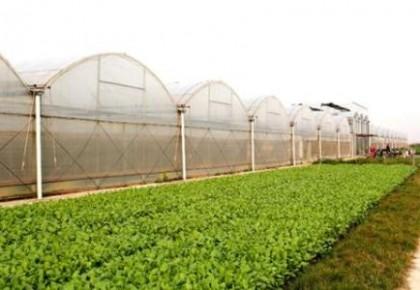 吉林省拟推荐9地开展农业产业强镇示范建设项目