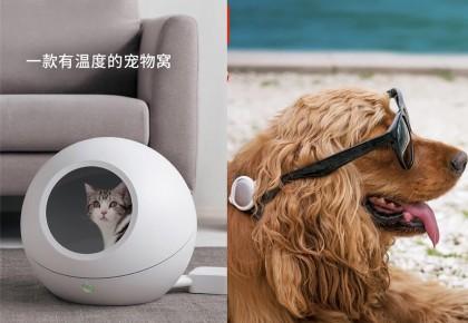"""自动喂食机、可调节温度的猫窝…宠物迈进""""智能家居时代"""""""