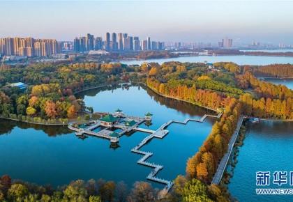 串联城市自然山水人文 共享生态文明建设成果——我国绿道建设发展综述