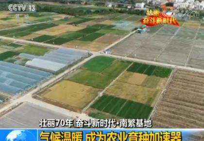 【壮丽70年 奋斗新时代】南繁基地:建设中国种业硅谷