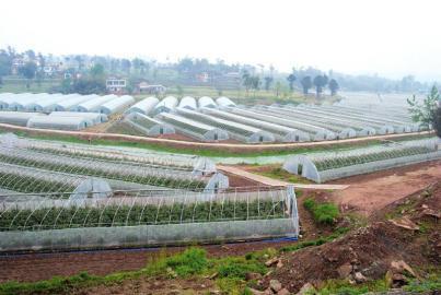 九部门合力解难题 推进现代农业发展