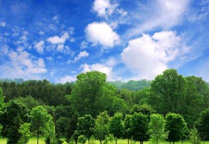 吉林省4人上榜!百名最美生态环保志愿者名单公示