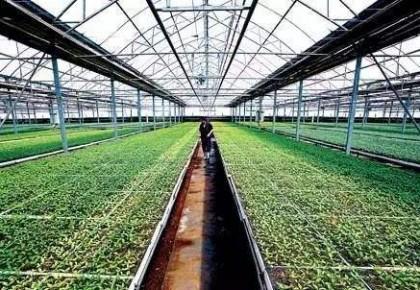 """""""亿元投资""""带来农业新气象"""