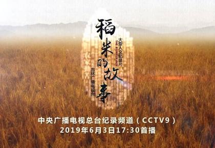 """一首""""新时代农之本心""""的畅想曲——人文纪录片《稻米的故事》登陆中央广播电视总台纪录频道"""