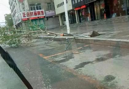 5月28日吉林省发布23条大风蓝色预警 最大风速23.3米/秒