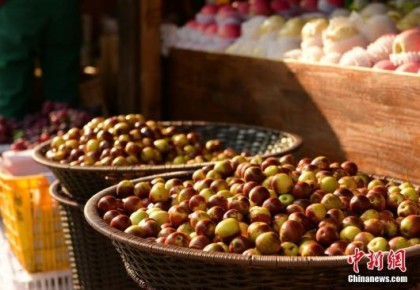 两部门:政府采购农副产品等应优先考虑贫困地区