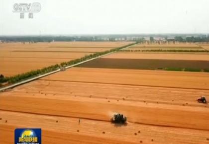 韓俊:中國有能力保障農產品供給
