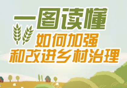 一图读懂如何加强和改进乡村治理