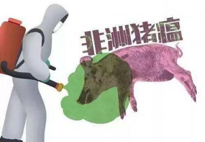 农业农村部要求毫不松懈抓好非洲猪瘟防控和生猪生产