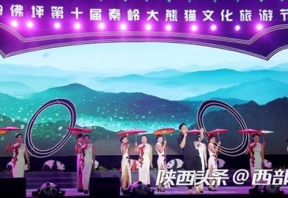 盛夏文旅大餐来啦!佛坪第十届秦岭大熊猫文旅节开幕