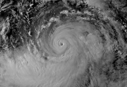 """卫生健康部门开展卫生应急和处置工作应对台风""""利奇马"""""""