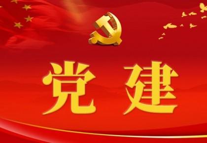 把党建设得更加坚强有力(习近平新时代中国特色社会主义思想学习纲要(19))