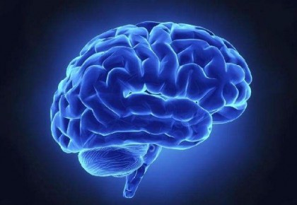 """為何總感覺""""腦子不夠用""""?五個因素加速大腦衰老"""
