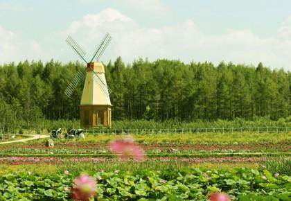 吉林省46家企业(园区)上榜休闲农业和乡村旅游星级示范名单!