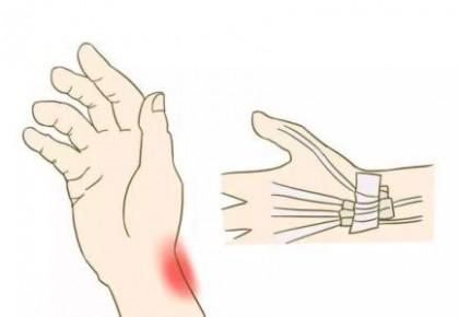 皮肤下发现新的痛觉器官