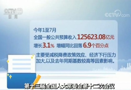 我国今年前七月一般公共预算收入125623.08亿元 增长3.1%