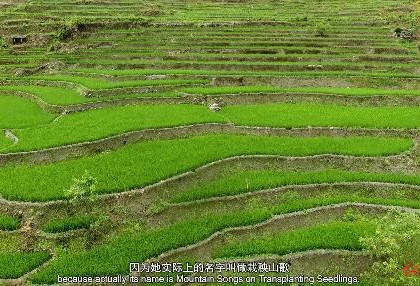 """""""可爱的中国""""之哈尼族:用双手雕刻大山 用歌声震撼世界"""