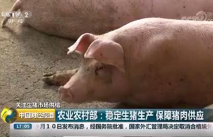 农业农村部:稳定生猪生产 保障猪肉供应