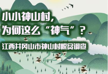 """小小神山村,为何这么""""神气""""?"""