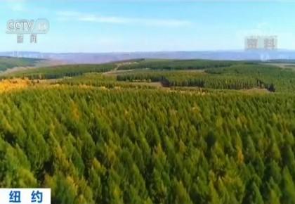 """中国连续三年荣获""""地球卫士""""奖 科技推动绿色可持续发展"""