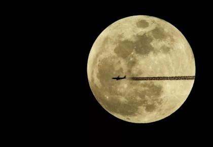 今日中秋 | 小时不识月,惟愿终皎洁