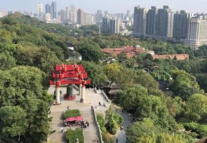 什么是高质量的5G建设?中国铁塔:更经济、高效,还更美