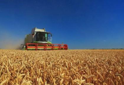 人民日报评论员:中国特色粮食安全之路越走越宽广