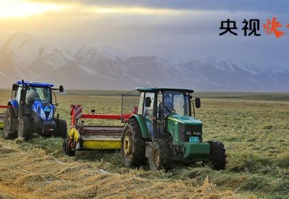 【央視快評】用科技助力脫貧攻堅和鄉村振興