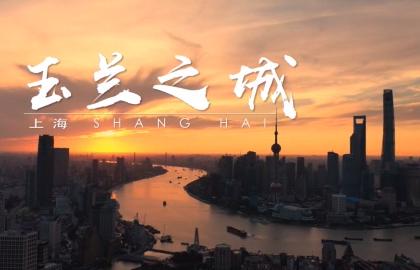 中央广播电视总台8K亚搏 彩票app下载纪录片《玉兰之城》重磅首发!