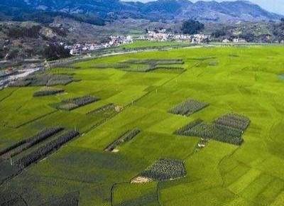 第二轮土地承包到期后再延长30年 赋予农民长久稳定地权