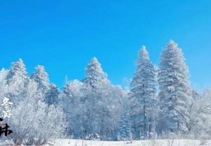 冬游吉林丨延边仙峰森林公园现数十公里高山雾凇景观,美如仙境!