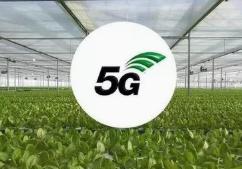 """告别""""土笨粗"""" 5G新技术让农业拥有无限可能"""