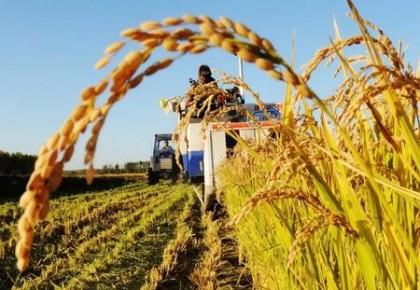 今年农闲长春市计划培训8万新农人