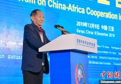 袁隆平:杂交水稻在非洲表现突出 比当地品种最高增产300%