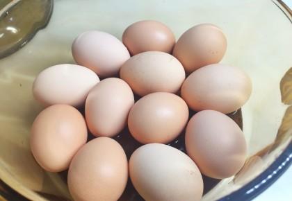 农业农村部:蛋价较上季度最高价下降近三成 下降幅度达26.94%