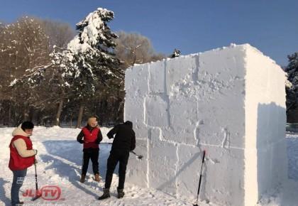 长春市南湖公园首届趣味雪雕赛今日开赛