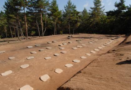 恭喜!吉林一地入围2019年中国考古新发现
