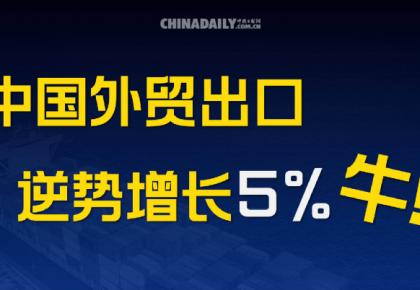 图说| 中国外贸出口逆势增长5%,牛!