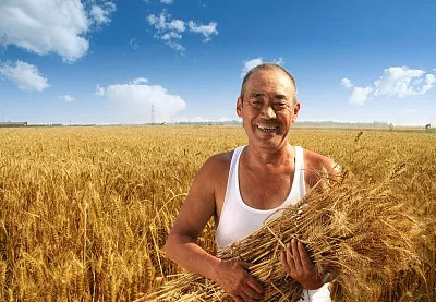 国务院印发重要文件,聚焦农业种质资源保护与利用