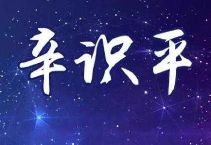 辛识平:特别峰会承载世界期待