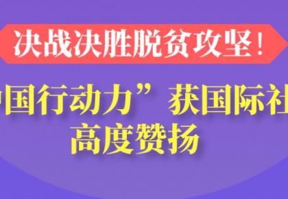 """【图说中国经济】决战决胜脱贫攻坚!""""中国行动力""""获国际社会高度赞扬"""