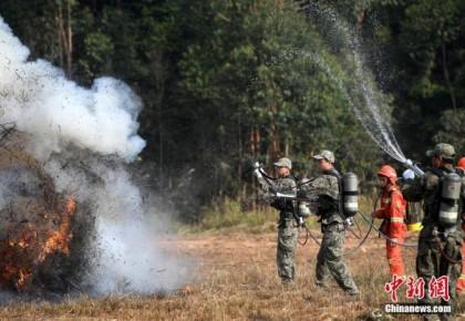 应急管理部:加大清明节重点时段防火宣传和督导力度