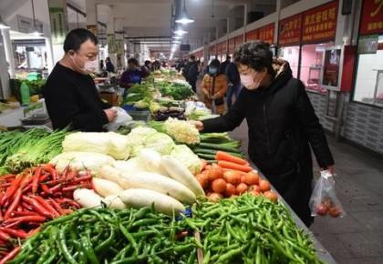 全国蔬菜价格呈现季节性下降 后期蔬菜供给有保障
