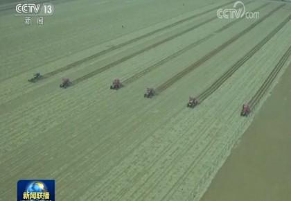 绿色春耕 力促粮食稳产提质